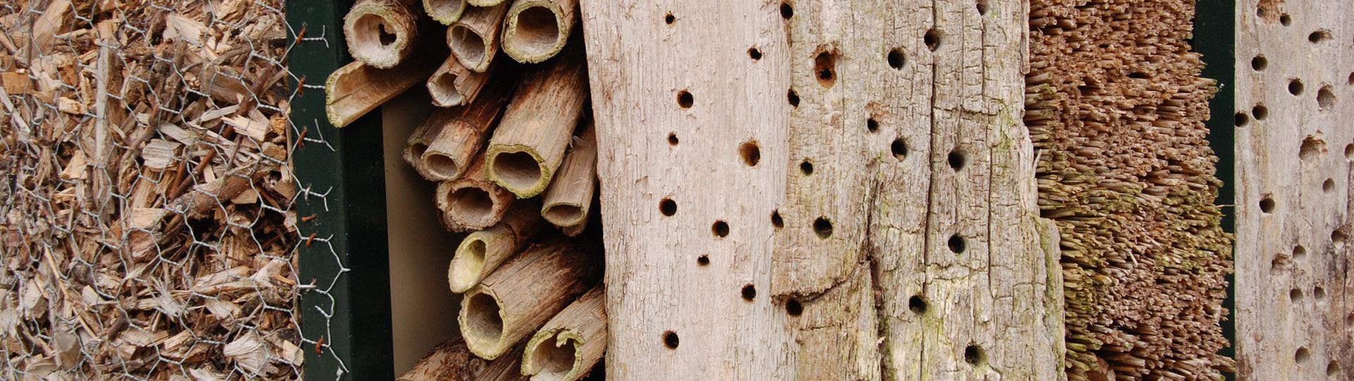 Afbeeldingsresultaat voor insectenhotels