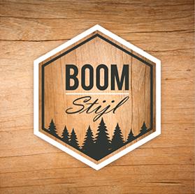 logo BOOM stijl
